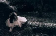 Liduna Kulna (Lost Love)