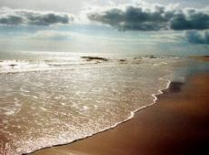 The Sun & The Ocean