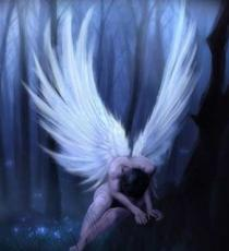 Expelled Angels