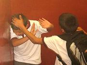 The Effects of School Bullying