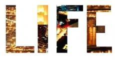 Life is like a . . .
