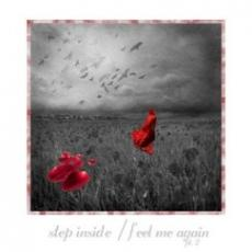 (05) Step Inside
