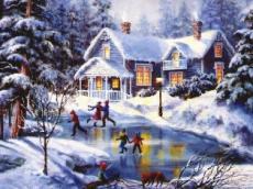 Wonderland of Snow
