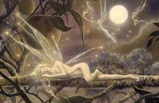 Vision of a Fairy