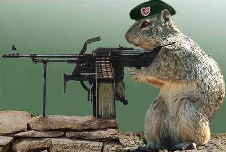 Squirrels and Wires , short story by mommy3 on