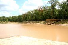 Muddy Water, Sunny Sky
