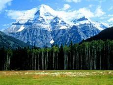 __Cold Mountain__