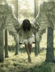 Angels tears raindrops ?