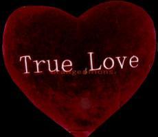 Dose true love exist?