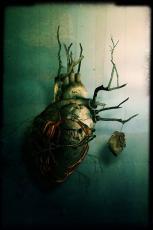 Rose Heart (Redrawn Infinity)