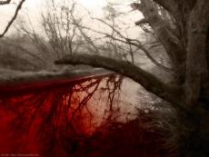 A River of Blood
