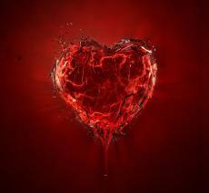 My heart's last sounds......