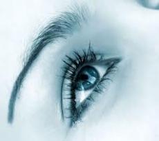 Eyes but no Vision