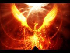 The Phoenix's Message