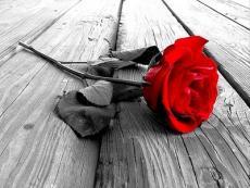 I still think of you-