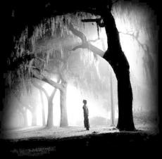 Lost Dreams (Haiku)
