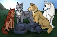 Kira's Pack Hierarchy