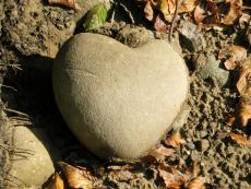A STONE HEART