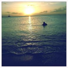 Ocean's Swim