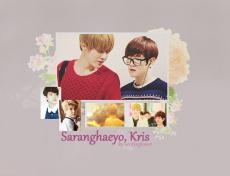 Saranghaeyo, Kris