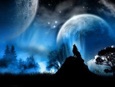The Beginning of Reizo and Daisuke as Werewolfs