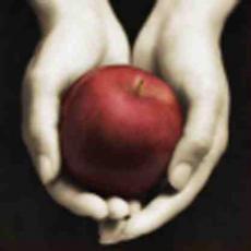 Twilight - Vampires do not sparkle!