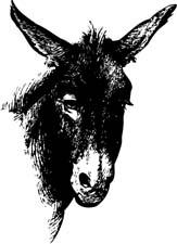 memoirs of a mule r.j.saxon