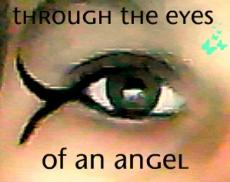 The Angels Eyes