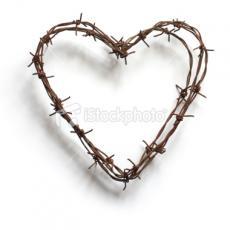 Amor Prohibentur