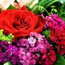 To My Wonderful Wife on V-Day
