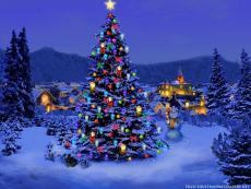December Sparkle