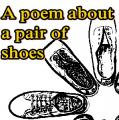 A poem about a pair of shoes