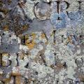 The Stench of Concrete and Gasoline