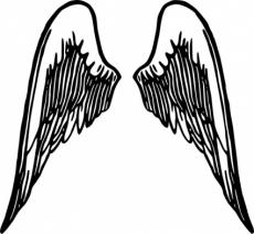 When I have wings