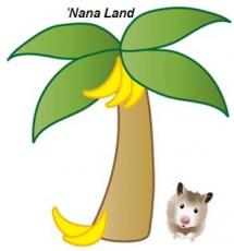 'Nana Land
