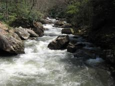 Water Haiiku