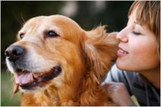 repressed memory & dog slobber