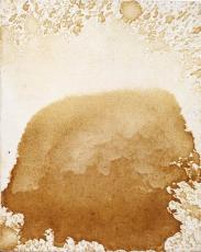 The Shroud of Urine