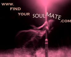 Find Your Soul Mate - Character Description - Marlin