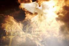 The Deity of the Holy Spirit