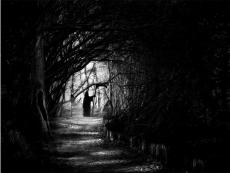 The Darkness Is My Home