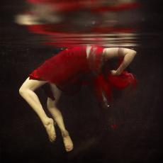 Blood & Water (Haiku)