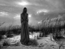 wandering grey soul