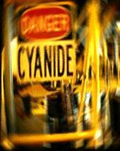 Cyanide For My Wine Glass (Fingers Do Count Deceit)