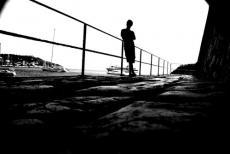 Shadow... Friend