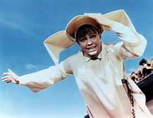 The Flying Nun Flies No More