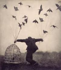 Flying, Soaring, Crashing,