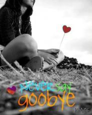 Never Say Goodbye.