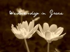 Wednesday in Grace