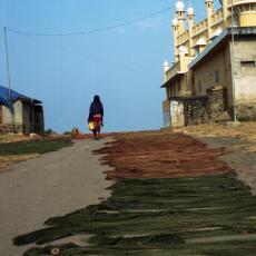 The Spirit of Kiratpur